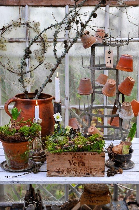 my Spring garden party