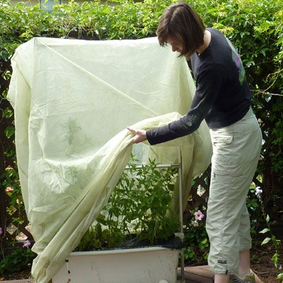 These Plant Protection Bags Are A Great Way To Protect