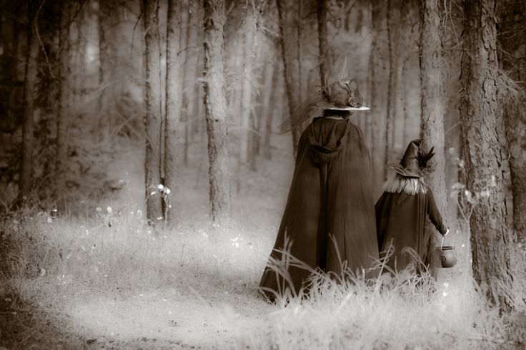 Witches Walking thru the Forest