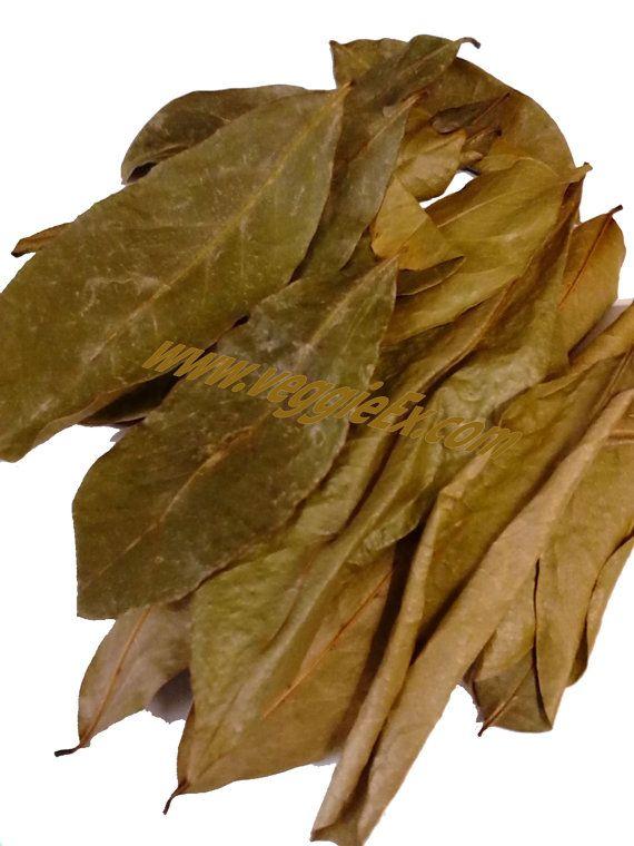 Soursop Leaves Soursop tea Soursop benefits Graviola by VeggieEx