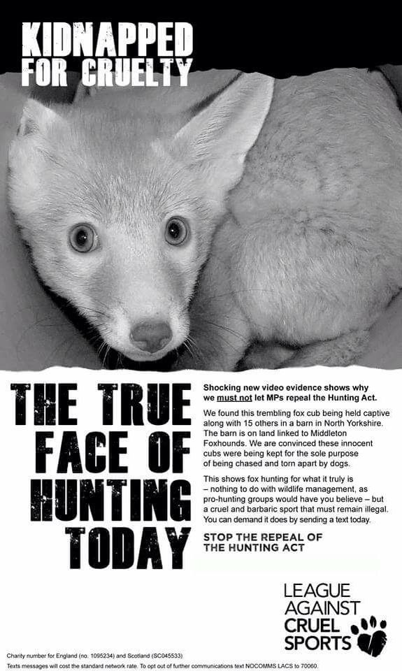 the truth about hunting