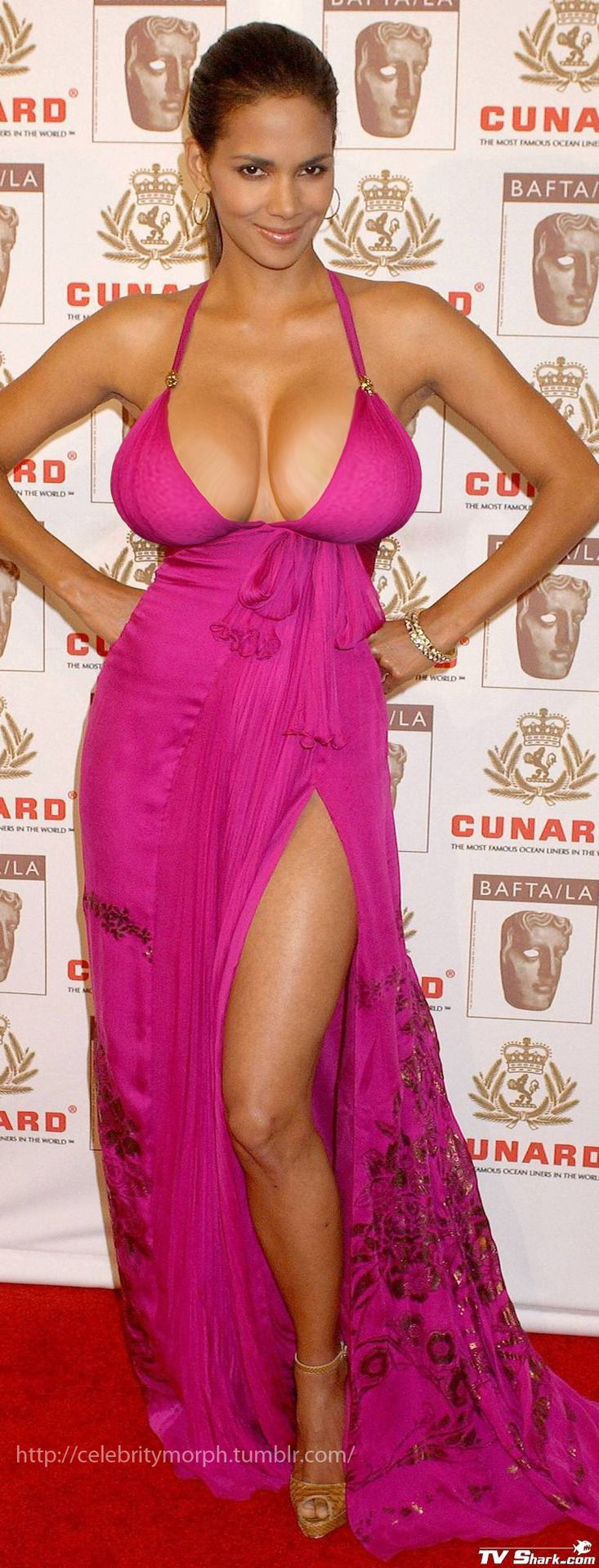 Celebrity boob blog