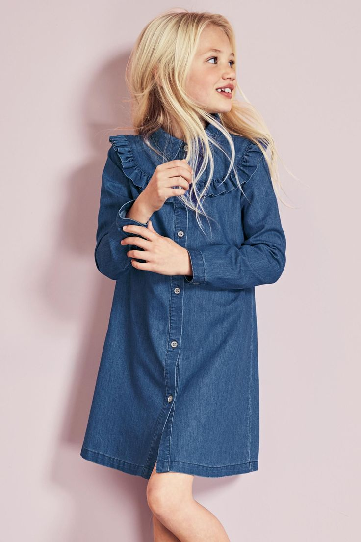 Buy Denim Ruffle Dress (3-16yrs) from the Next UK online shop