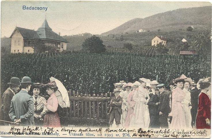 Régi képeslap a Bacchus házról, 1905-ből. Badacsony - Lake Balaton - Hungary