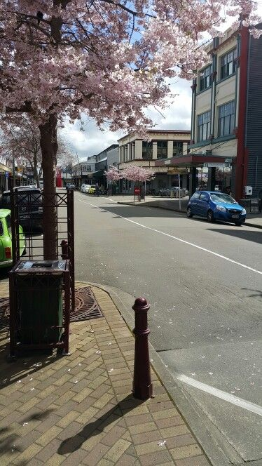 A gorgeous day in George Street. Palmerston North. New Zealand.