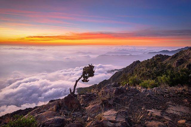 طابت أوقاتكم بكل خير اطلالة على عقبة ريدة عسير ابها Fujifilm Xt1 Natural Landmarks Landmarks Nature