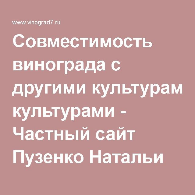 Совместимость винограда с другими культурами - Частный сайт Пузенко Натальи Лариасовны.