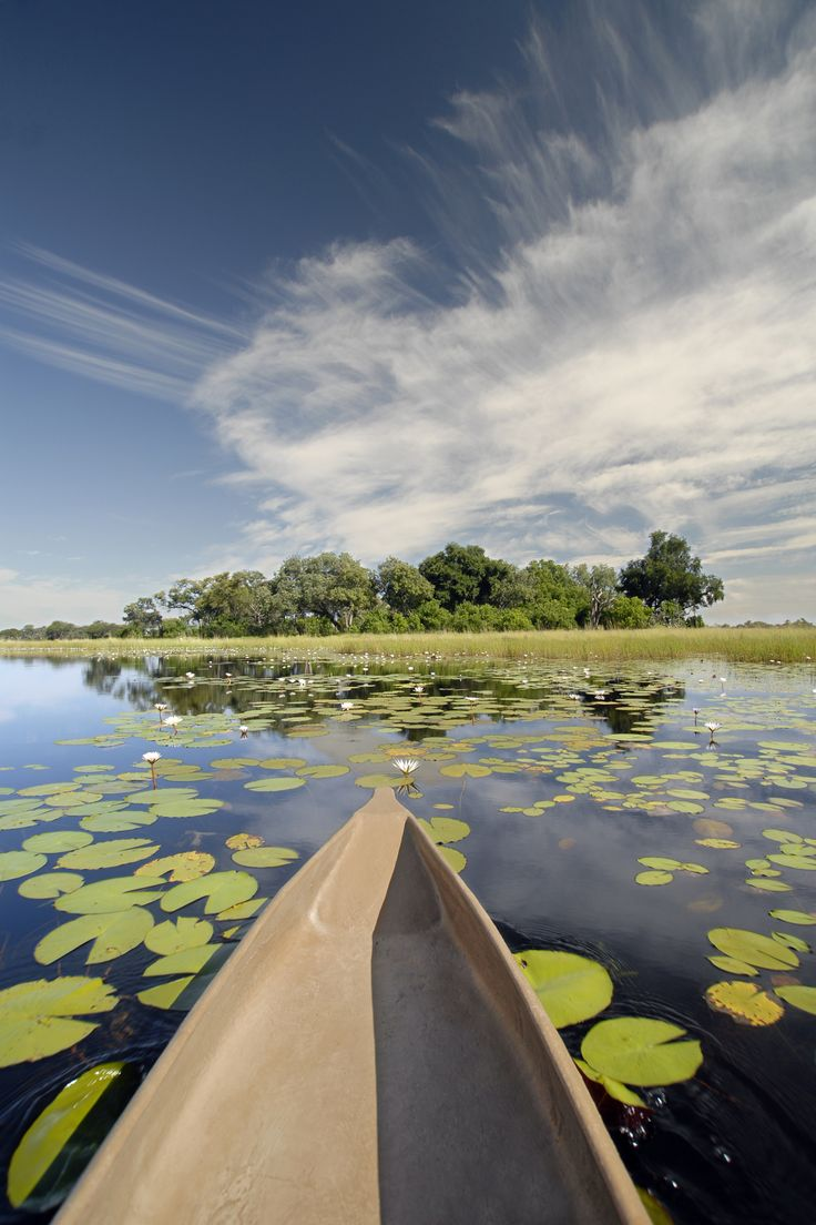 Mokoro ride, Botswana - Explore the World with Travel Nerd Nici, one Country at a Time. http://TravelNerdNici.com