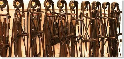 Bridle Row- Ideas for tack room organization