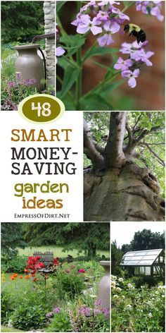 48 smart money saving garden ideas for organic gardeners - Hinterhoflandschaften