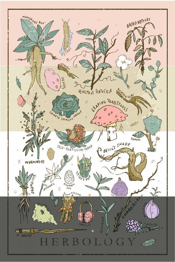 Harry Potter Herbología impresión / cartel por WellSaidCreations