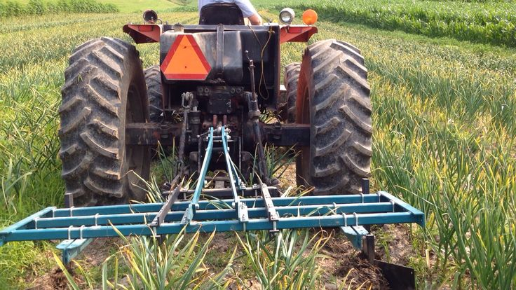 Tractor Going Right On Man : Best images about garlic equipment on pinterest right