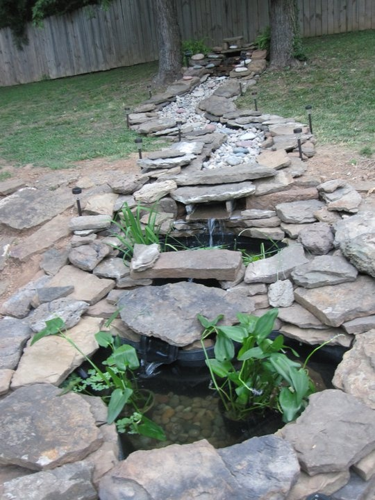 17 Best Images About Pond Possibilities On Pinterest