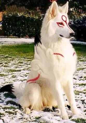 I'VE BEEN WAITING FOR THIS MY ENTIRE LIFE IT'S A DOG COSPLAYING AS AMATARASU FROM OKAMI!!!!!