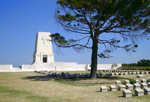 Lone Pine Cemetery, Gallipoli, Turkey   You can still walk in the trenches at the other end of the cemetery!