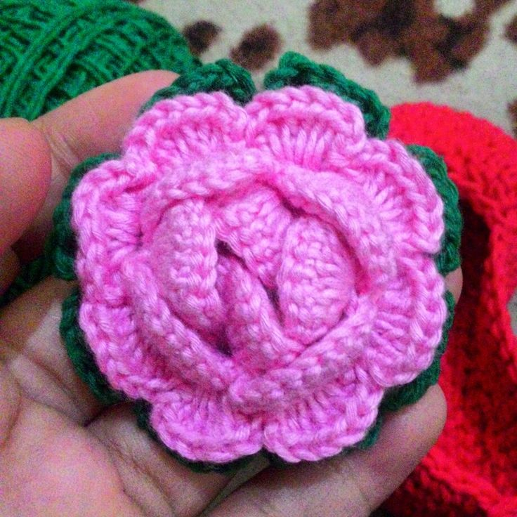 My firts Rose
