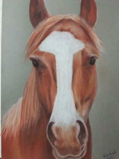 Another much loved old man.  Polychromo pencil drawing
