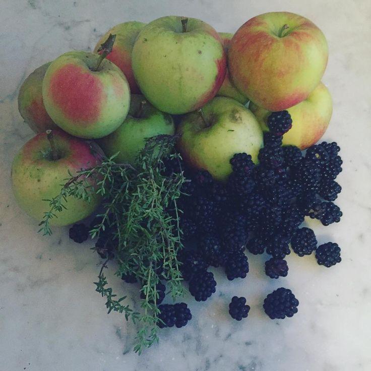 In het vroege ochtendlicht op deze zondagochtend al even door de tuin om appels bramen en wat tijm te plukken voor een taart. (Vandaar ook de iets was slechte belichting.) Merk dat het ritme nog niet helemaal terug is dus het zal wel taart voor bij de thee (voordat ie straks helemaal is afgekoeld) worden vandaag. Maar ik heb er nu al zin in. Wat voor lekkers eet jij vandaag bij de koffie of thee? Fijne zondag iedereen.  #zondag #rustdag #taart #trixstyle #appels #apples #bramen #blackberry…