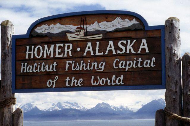 Best 25 halibut fishing ideas on pinterest bass fishing for Alaska deep sea fishing