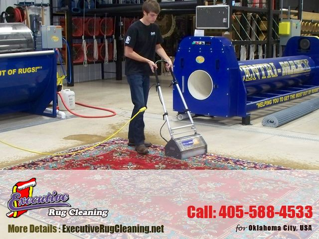 Pet Odor Removal Arcadia:  DIY Cleaning vs. Professional Cleaning