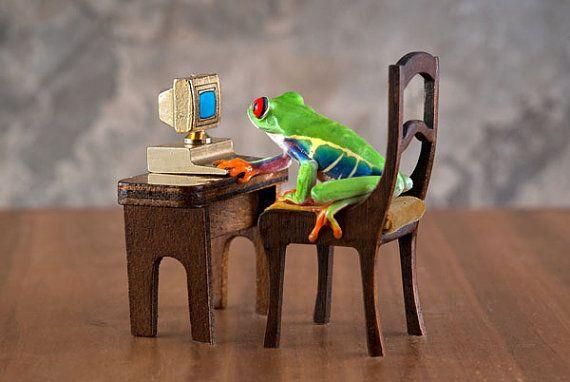 Computer Frog Art, Funny Frog Art, Internet Art