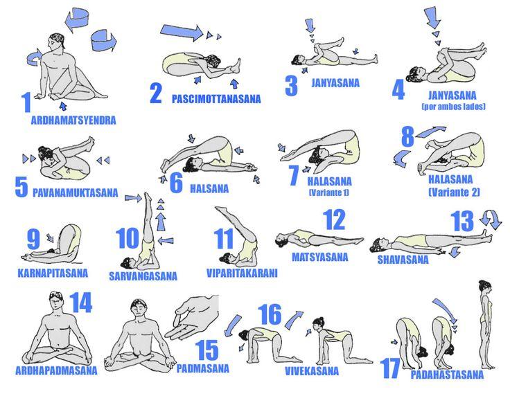 Hatha Yoga on the Forgotten Coast: Uniting Body, Mind & Spirit by Kathy Jansen | Pure Yoga DVD
