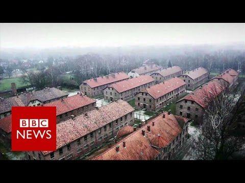 The Catholic Saints of Auschwitz