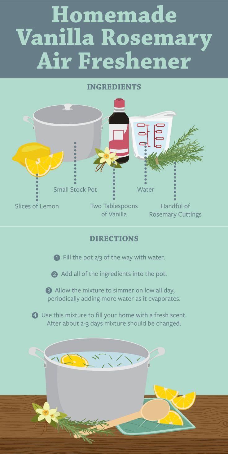 Stinky house? Check out these easy DIY air fresheners that will have your home smelling delicious.