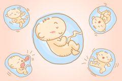 Vaterschaftstest Im Mutterleib