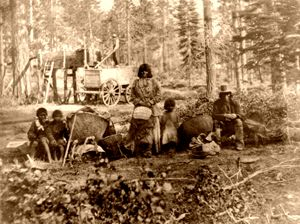 an analysis of the donner party in american exploration Donner party deaths: a demographic assessment last member of the party was rescued, 40 had died analysis of the donner party provides popular american.