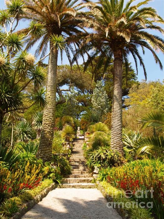 Abbey Gardens on Tresco in the Isles of Scilly.