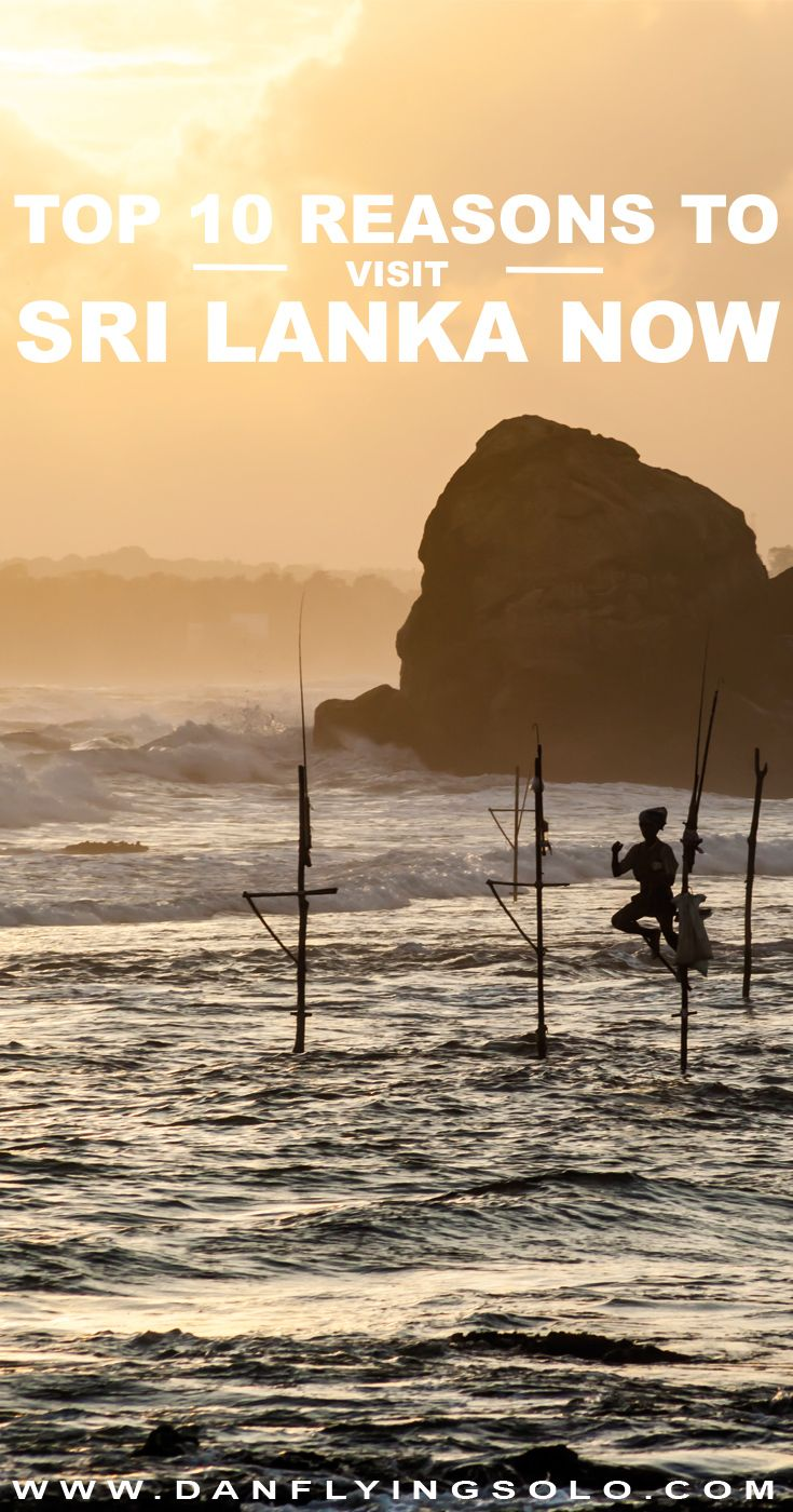 From pristine empty beaches, taking an elephant safari or exploring lush tea plantations. The top 10 things to do in Sri Lanka and why you need to get there now!