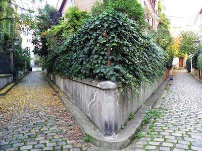 7.Balade champêtre : square des Peupliers (13ème) Encore un petit îlot de maisons pittoresques perdues dans une végétation foisonnante. Derrière les portes presque étouffées par la nature, on imagine bien une vie calme, loin de la folie parisienne, enfoncé dans un fauteuil confortable, un bouquin corné à la main, le chant des oiseaux en guise de réveil.  72 rue Moulin-des-Prés, 75013 Paris Métro : Tolbiac