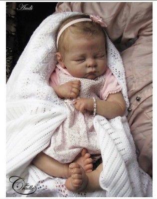 ❤️Beautiful Reborn Doll Baby❤️ Custom Made From Andi Asleep
