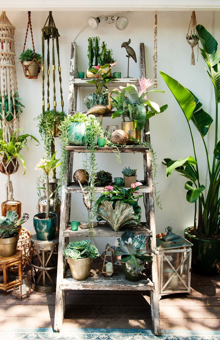 Love this plant filled space. Macrame plant hangers and a ladder full of botanical loveliness.