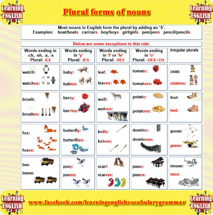 plural form of nouns - learning English grammar