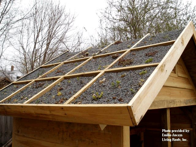68 best ideas about shed project on pinterest green for Sloped roof shed