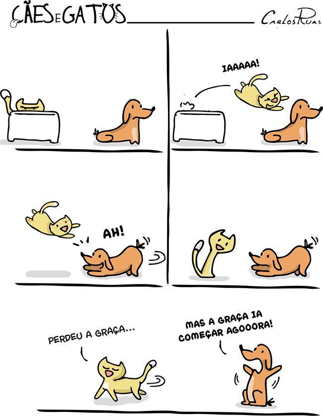 Cães e Gatos – Cada um brinca do seu jeito