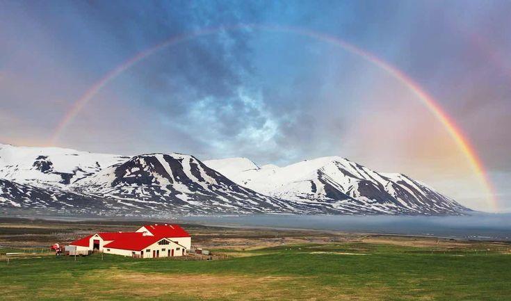 Islanda, idillio rurale!