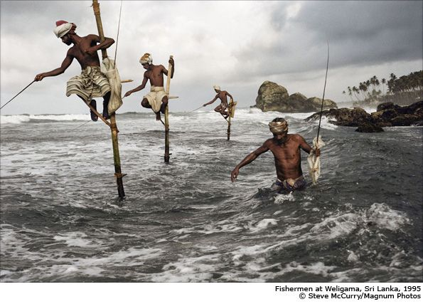 """A Steve McCurry photo of Fishermen taken in Sri Lanka, 1995. Quote by Steve McCurry: """"I had photographed these fishermen with this very unique way of fishing from the shore and after a while I realised that to get the best angle was to join them, so I had to wade into the water up to my waist. It's such a strange and wonderful way they fish perched on this pole, which is jammed on this coral reef, and they sit there for a couple of hours in the morning"""""""