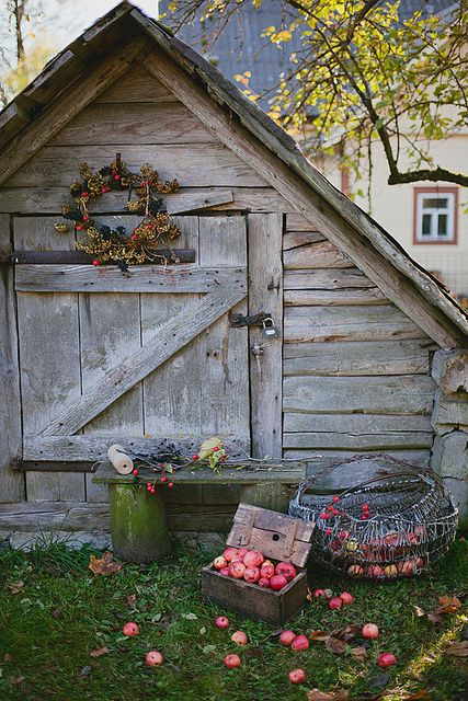 October by loretoidas, via Flickr