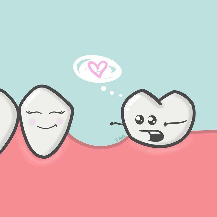 """151 Me gusta, 9 comentarios - V.Han  (@thedroolingtooth) en Instagram: """"Mesialization of the second molar! #dental #dentistry #dentalcare #dentallife #dentalstudent…"""""""