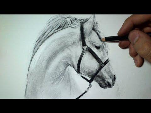 Comment dessiner une tête de cheval [Tutoriel] - YouTube