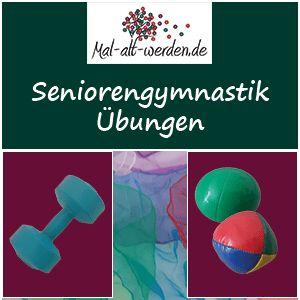 Seniorengymnastik: 100 Übungen und weitere Anregungen