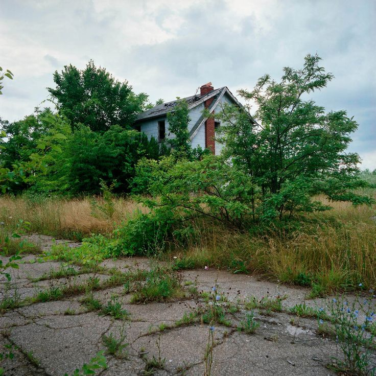 Abandoned home in Detroit.