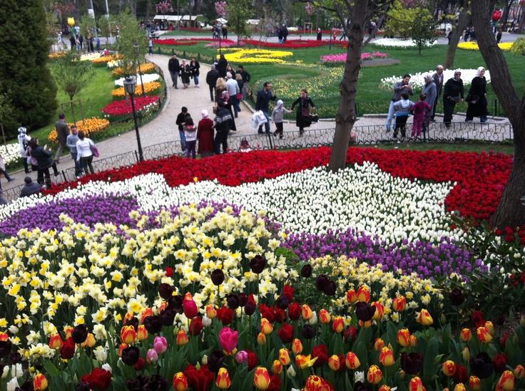 İstanbul- Emirgan Korusu