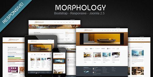 Joomleros! :: Tema: Morphology - Responsive Joomla 2.5 Business Theme (1/1) | Joomleros