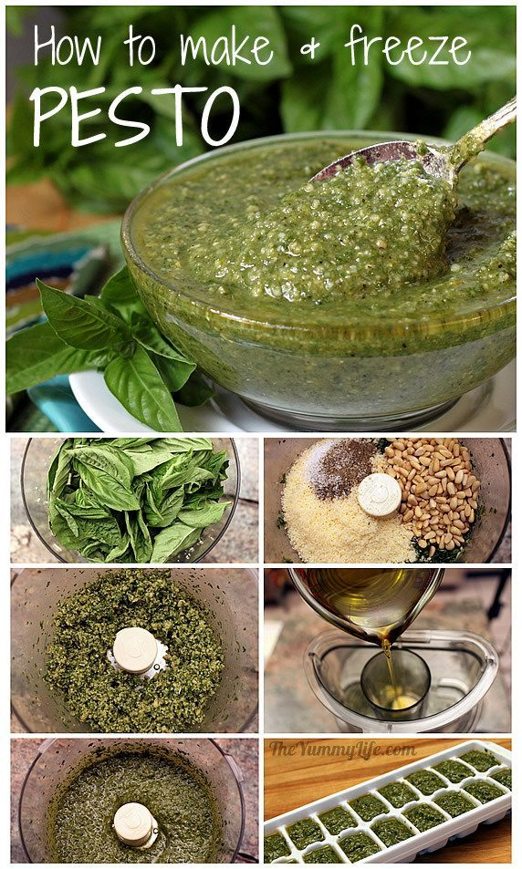 PESTO! Easy step-by-step instructions for making and freezing it.