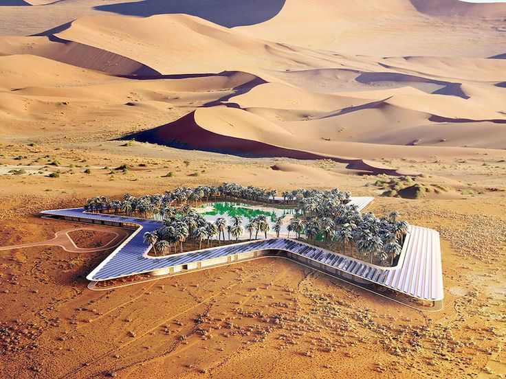 Incredible Eco Resort in the United Arab Emirates – Fubiz Media
