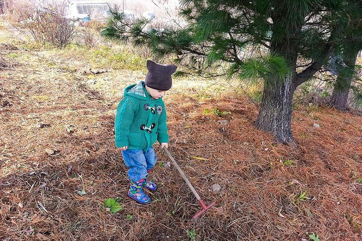 Убираю траву и листья